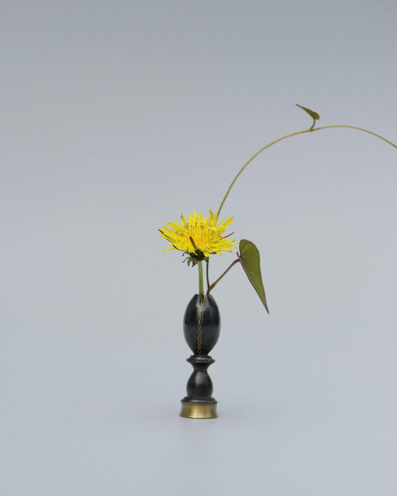 Objects in Black Sea fan and brass vase